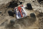 Losi Mini 8IGHT-T 1:14 4WD Brushless Truggy RTR