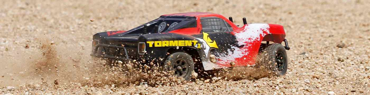 Torment 1:24 4WD RTR